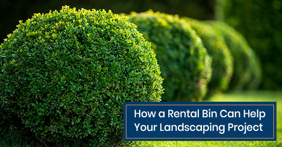 Benefits of a rental bin for you landscaping project